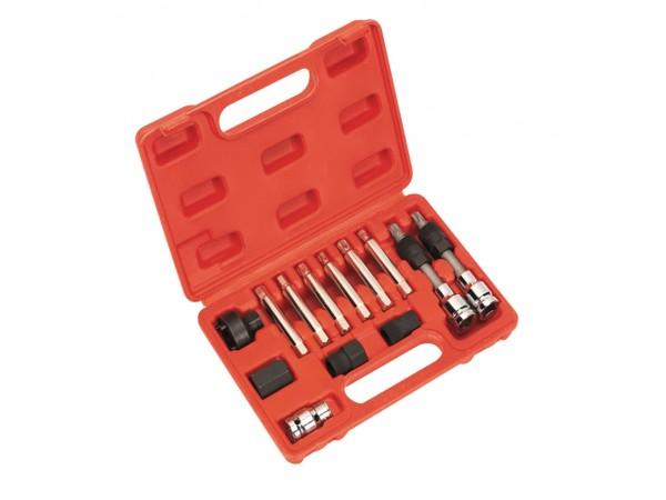 Set de chei pentru fulii de alternator 13 piese